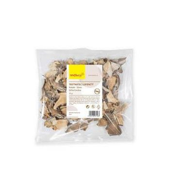 trsovnica-lupenovita-maitake-susene-huby